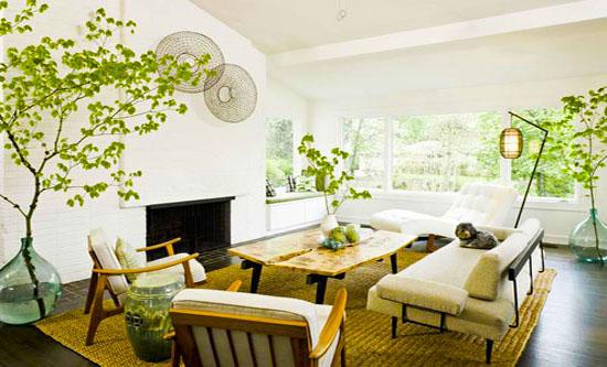 Cây xanh và phong thủy trong thiết kế không gian sống nhà bạn